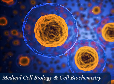 Medical Cell Biology & Cell Biochemistry