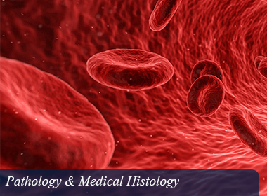 Pathology & Medical Histology