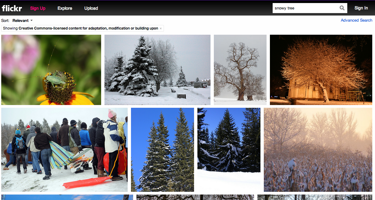 Capture of the flickr search results page