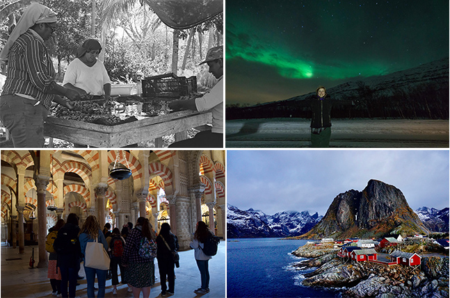 images of the four winning photographs