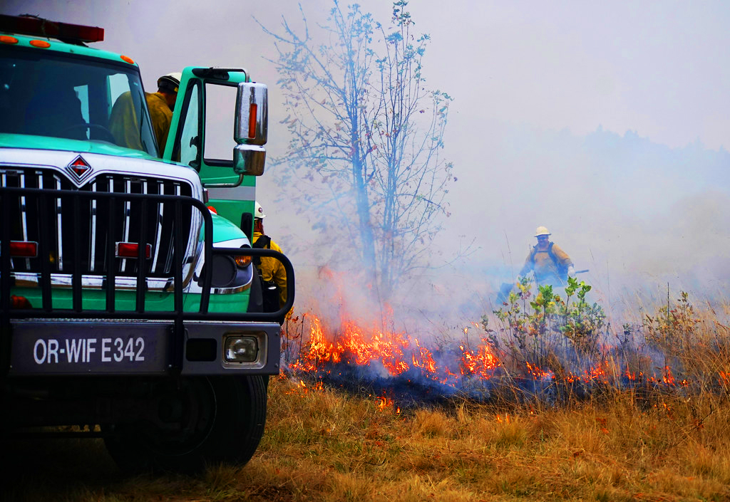 Forest Fire Truck with person working on a fire