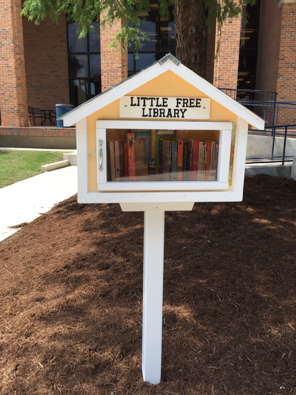 Little Free Library @ St. Mary's University