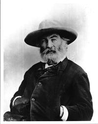 Portrait of American poet Walt Whitman. Library of Congress