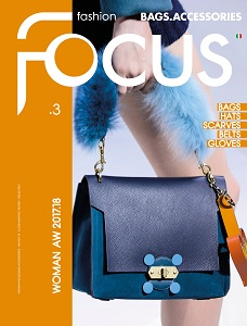 cover of Fashion Focus Bags Accessories Woman