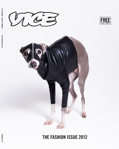 Cover of Vice