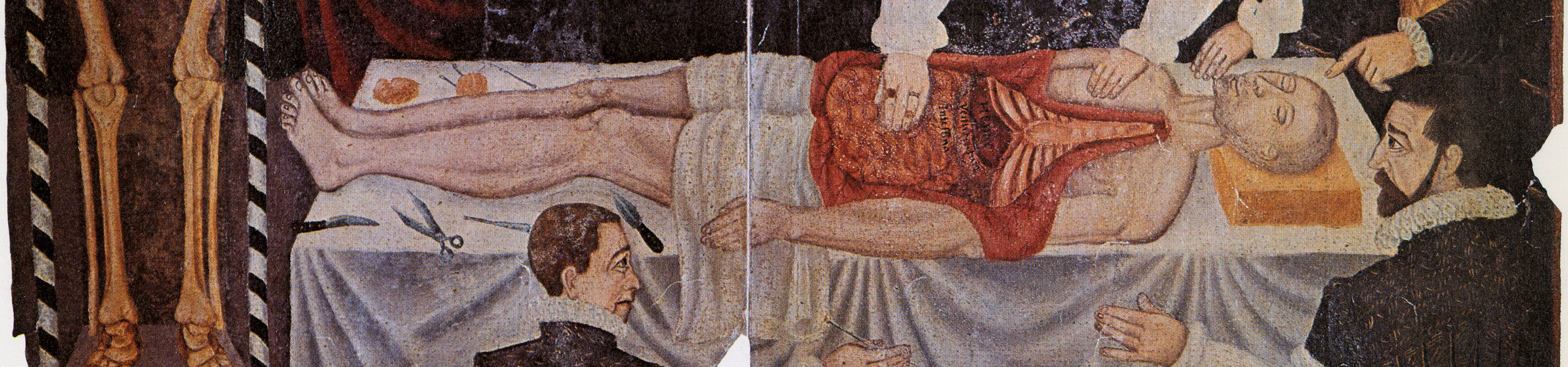 A painting of a human anatomy dissection from the Middle Ages. The image is from the library's Picture Collection.