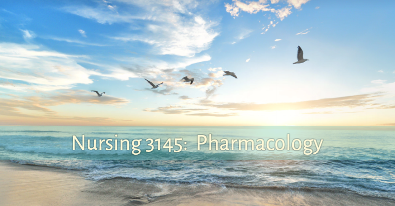 Image of birds.  Nursing 3145 Pharmacology research support page.