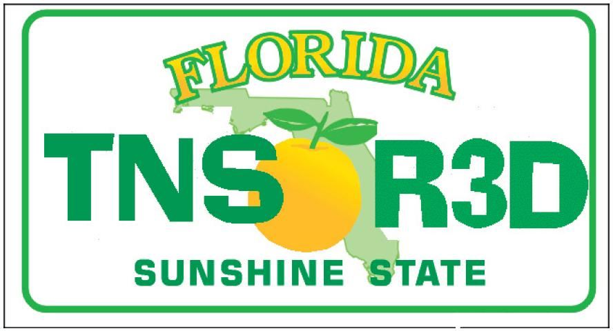 Florida Teens Read Logo