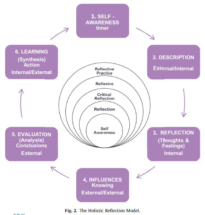 Bass's Holistic Reflection Model
