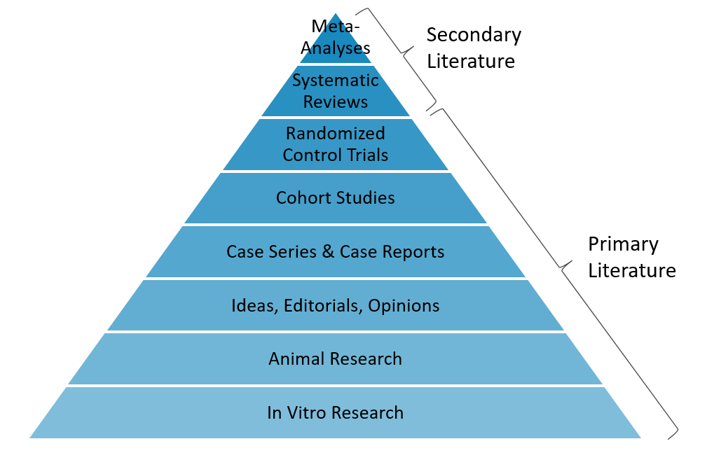 Primary and Secondary Literature Pyramid