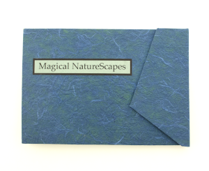 cover image of magical naturescapes by jill timm