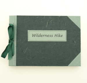 cover image of wilderness hike by jill timm