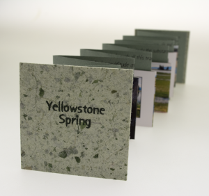yellowstone spring by jill timm