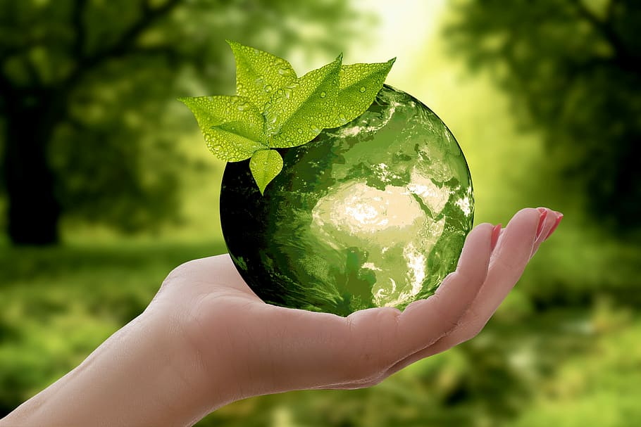 Earth Day image - leaf and planet earth