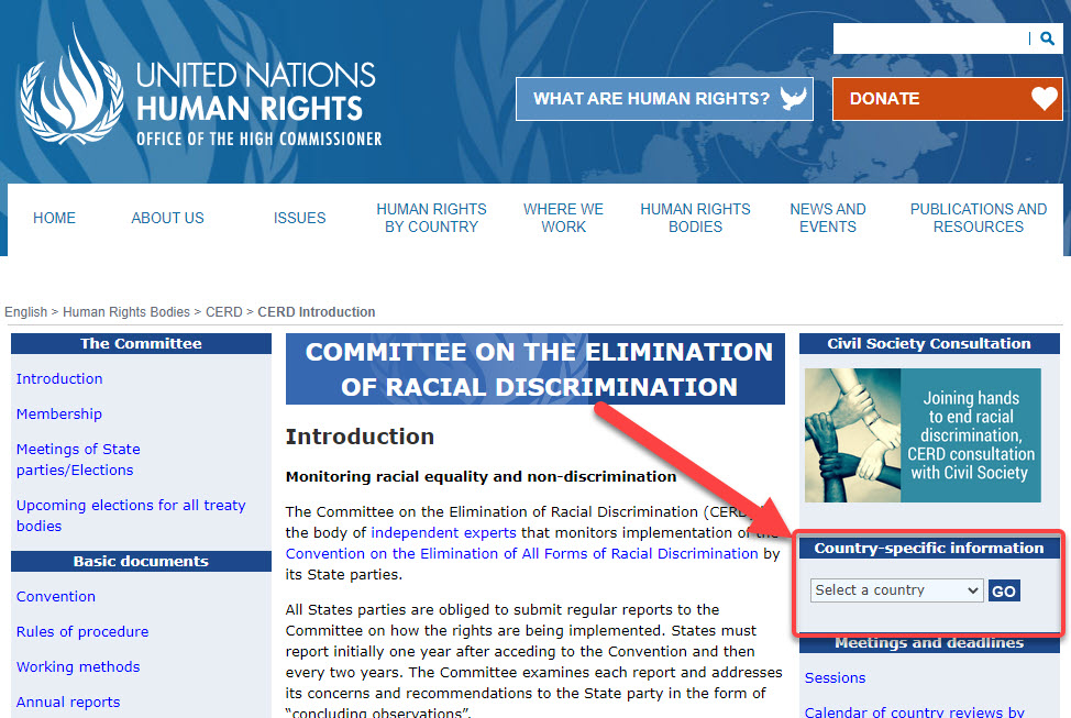 Website screenshot of Committee on the Elimination of Racial Discrimination