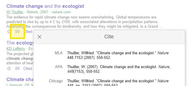 Google Scholar citation feature
