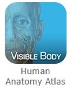 Anatomy Atlas button