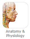 Anatomy & Physiology button