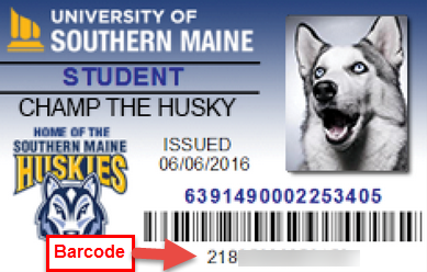 Picture of a USM ID Card