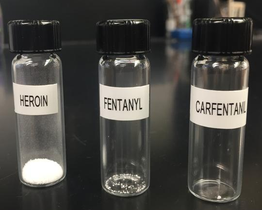 Comparing a lethal dose of heroin, fentanyl, and carfentanil.