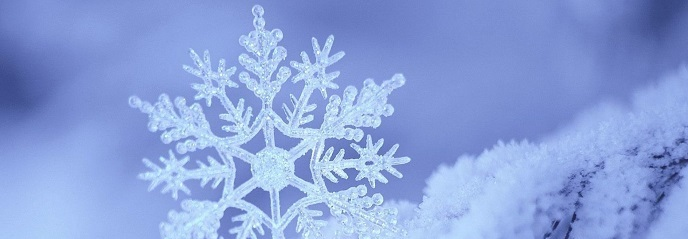 Snowlfake