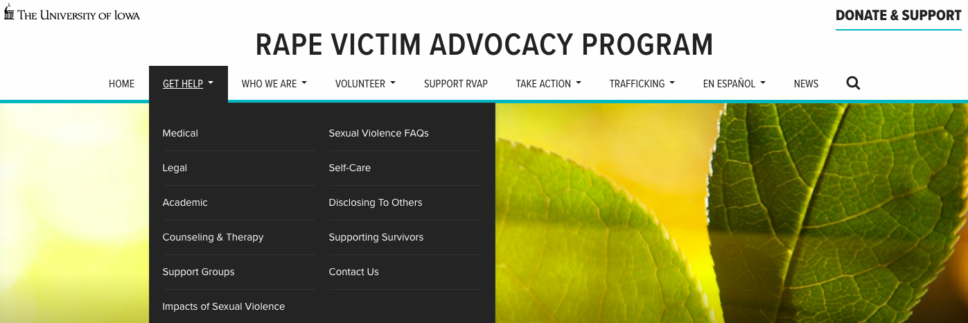 Link to Rape Victim Advocacy Program