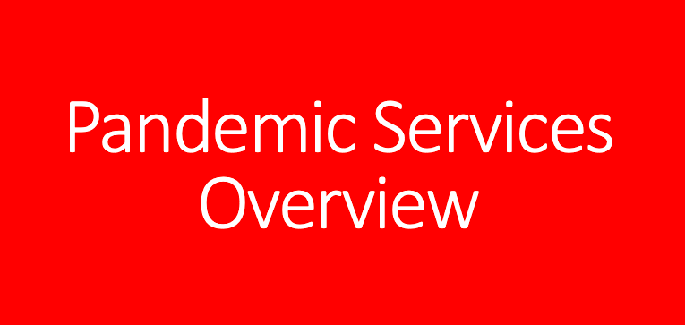 pandemic services overview