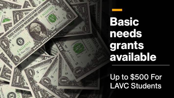 Basic Needs Grant For LAVC Students