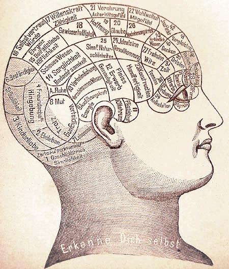 19th century phrenology illustration