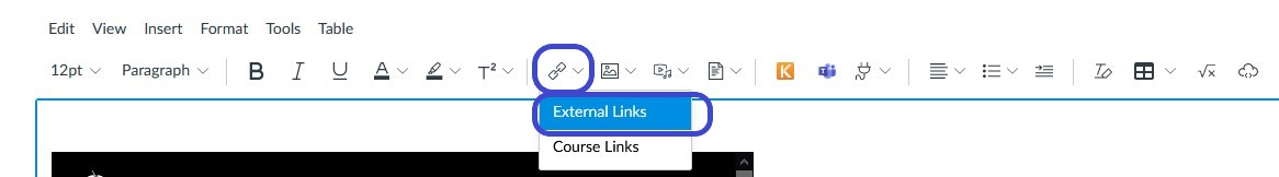 Creating external link in Canvas Rich Text Editor