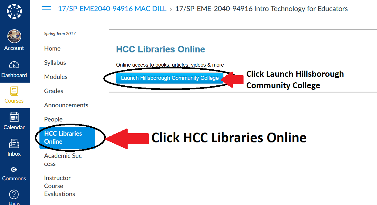 Canvas page highlighting the library access link