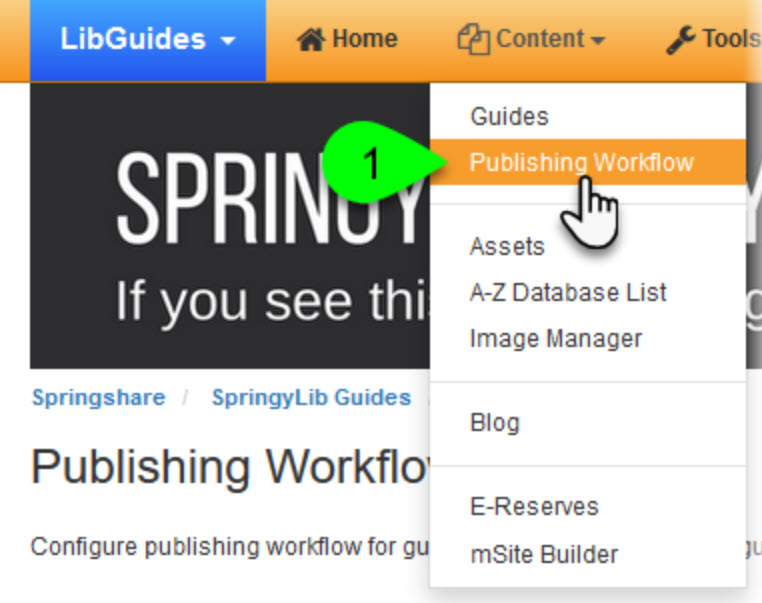 Publishing workflows