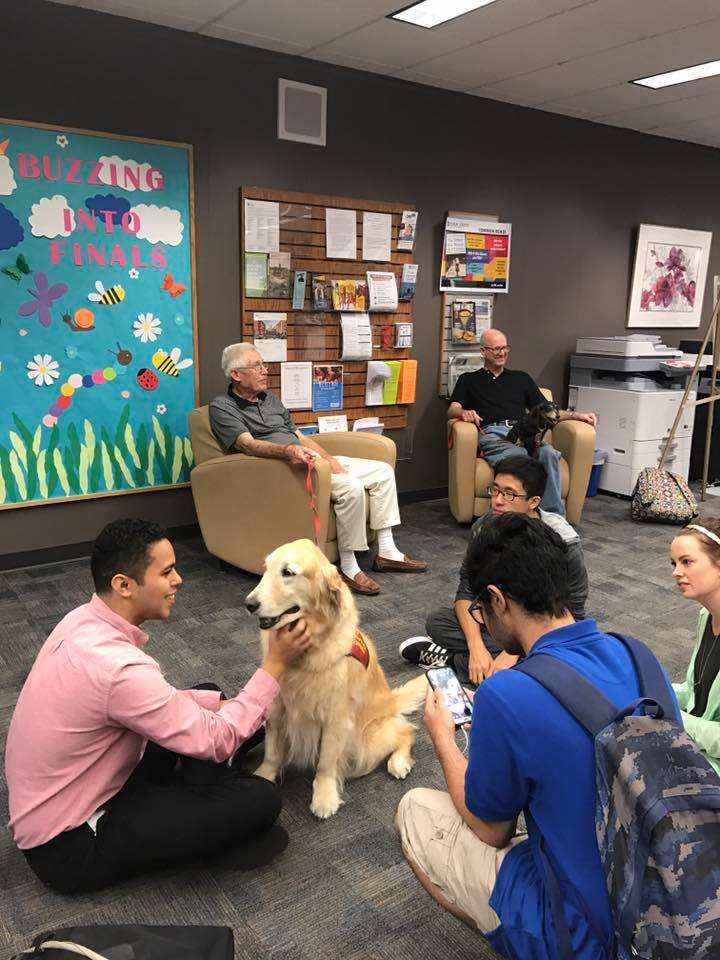 therapy dog for finals