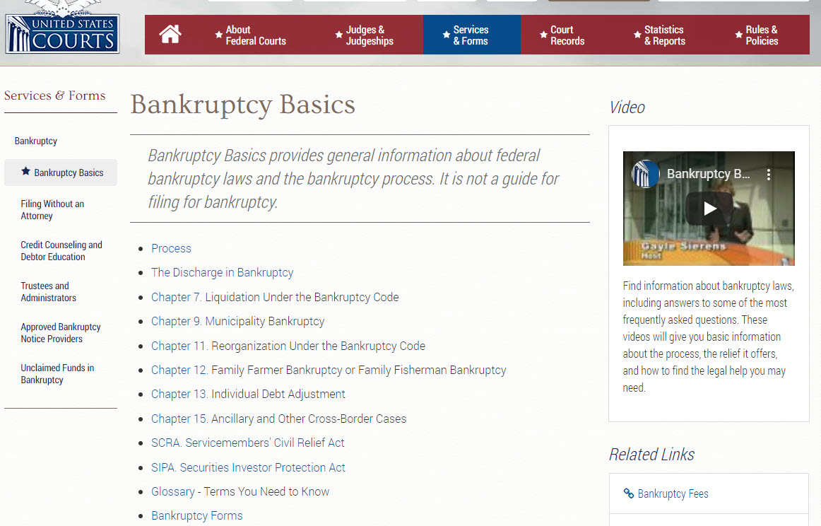 U.S. Courts Bankruptcy Basics website.