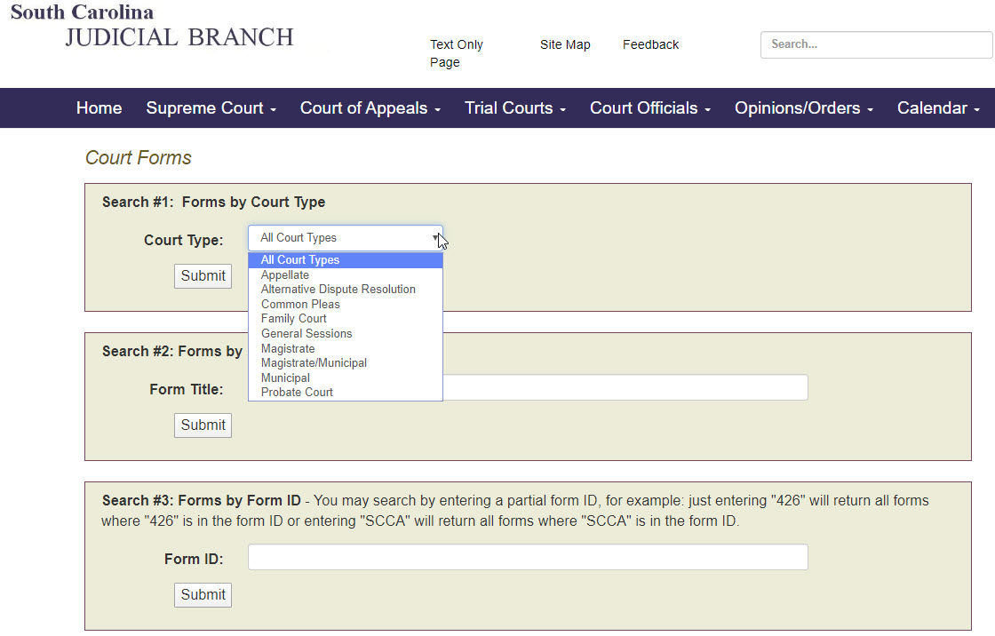 Court Forms page on the SC Judicial Department's website.