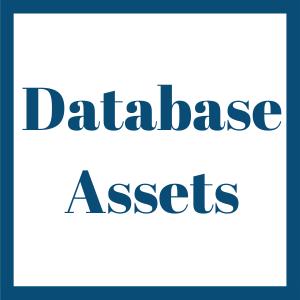 Database Assets link
