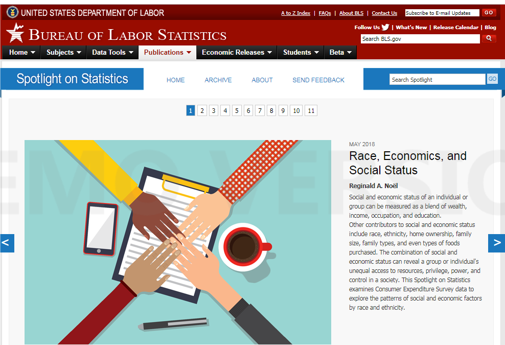 BLS-Spotlight on Statistics