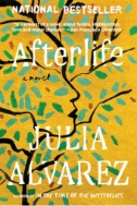 Cover of Afterlife