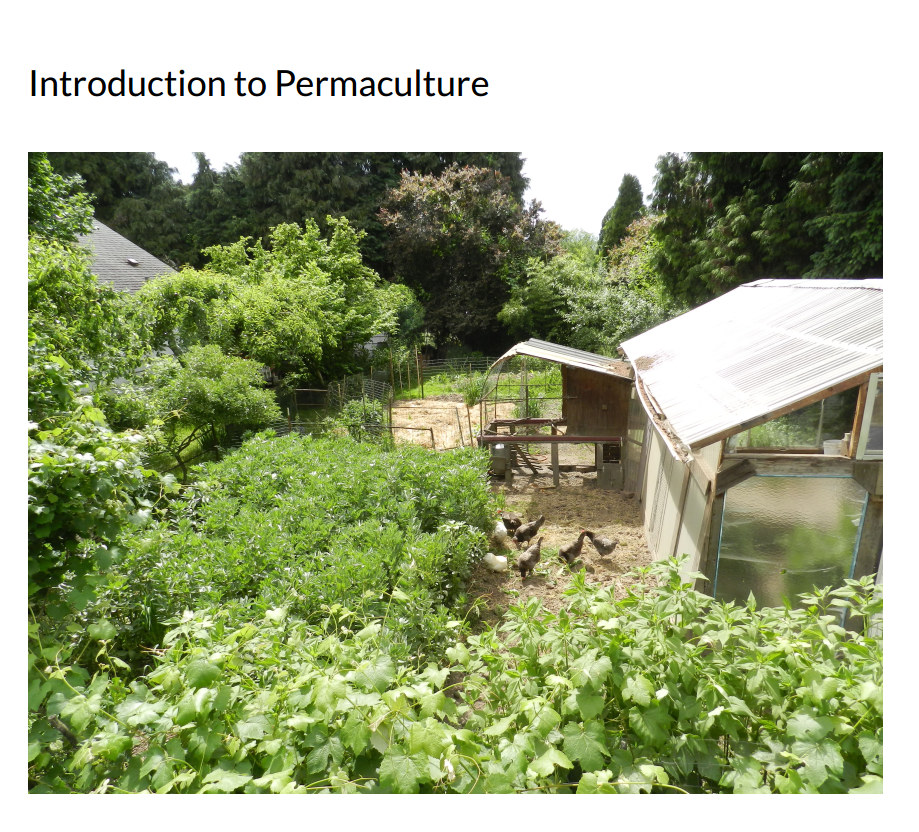 Intro to Permaculture  [cover image]