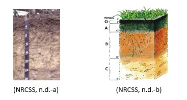 example in text-citation of soil images