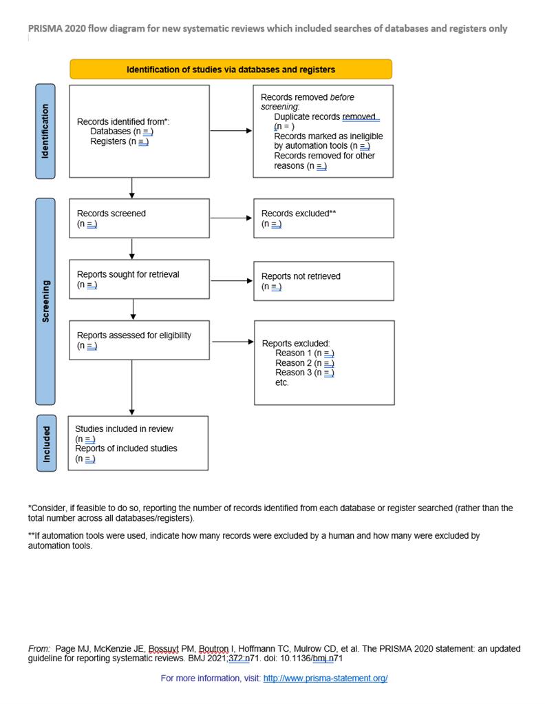 Prisma 2020 workflow