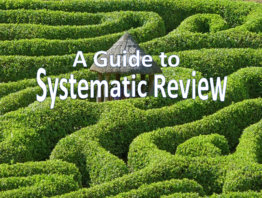 Green maze with a sign over it stating a guide to systematic review