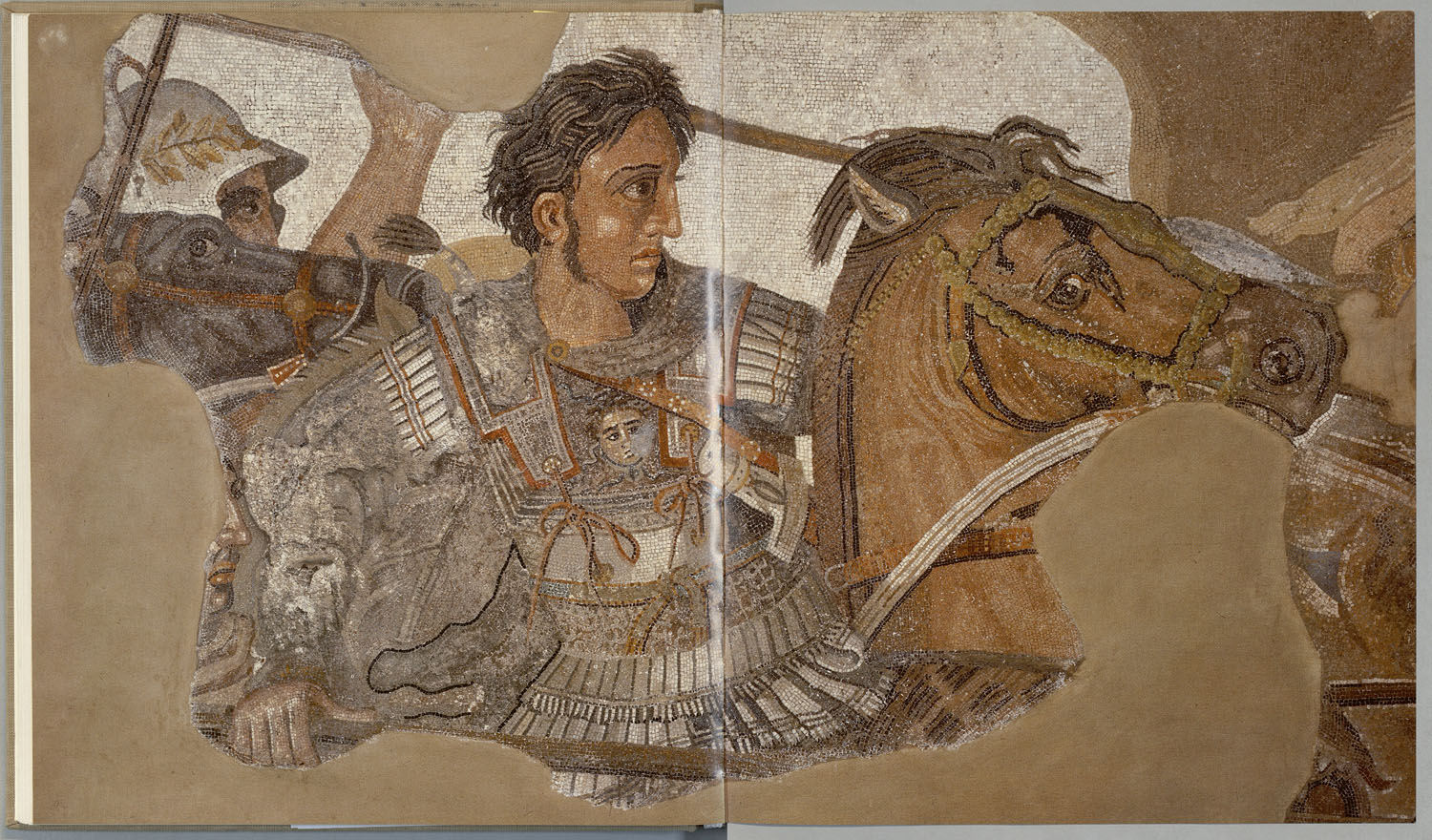 Detail of Alexander the Great from Alexander Mosaic