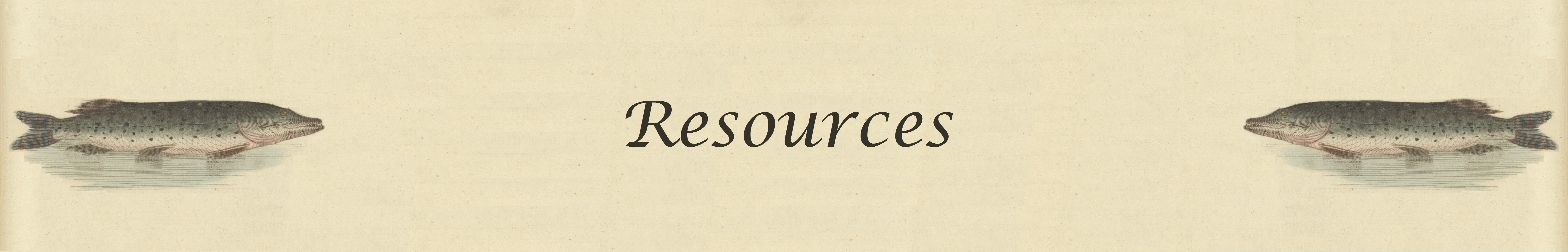 Resources Page Banner