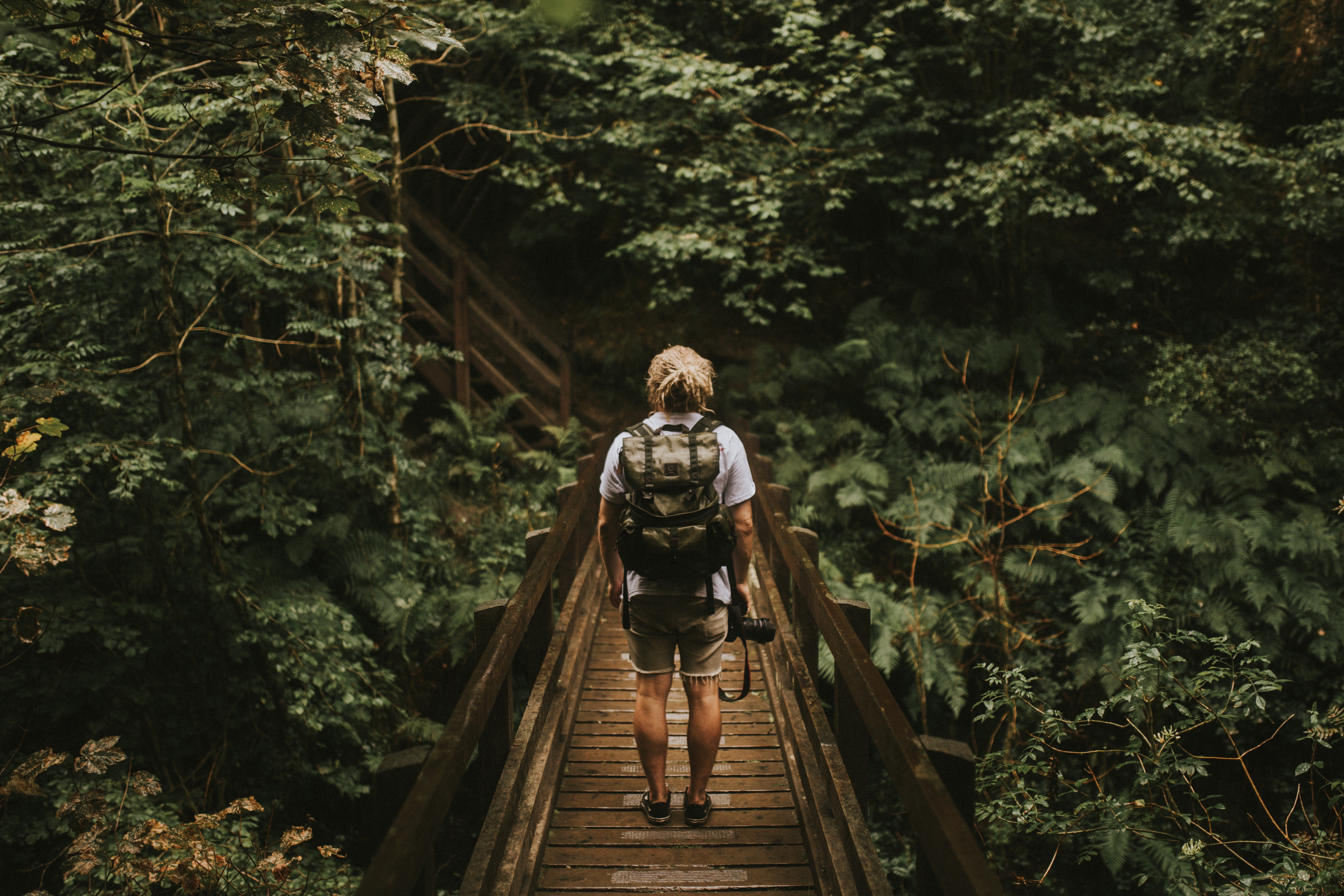 Man on bridge in forest.