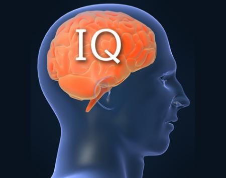 graphic of brain with IQ