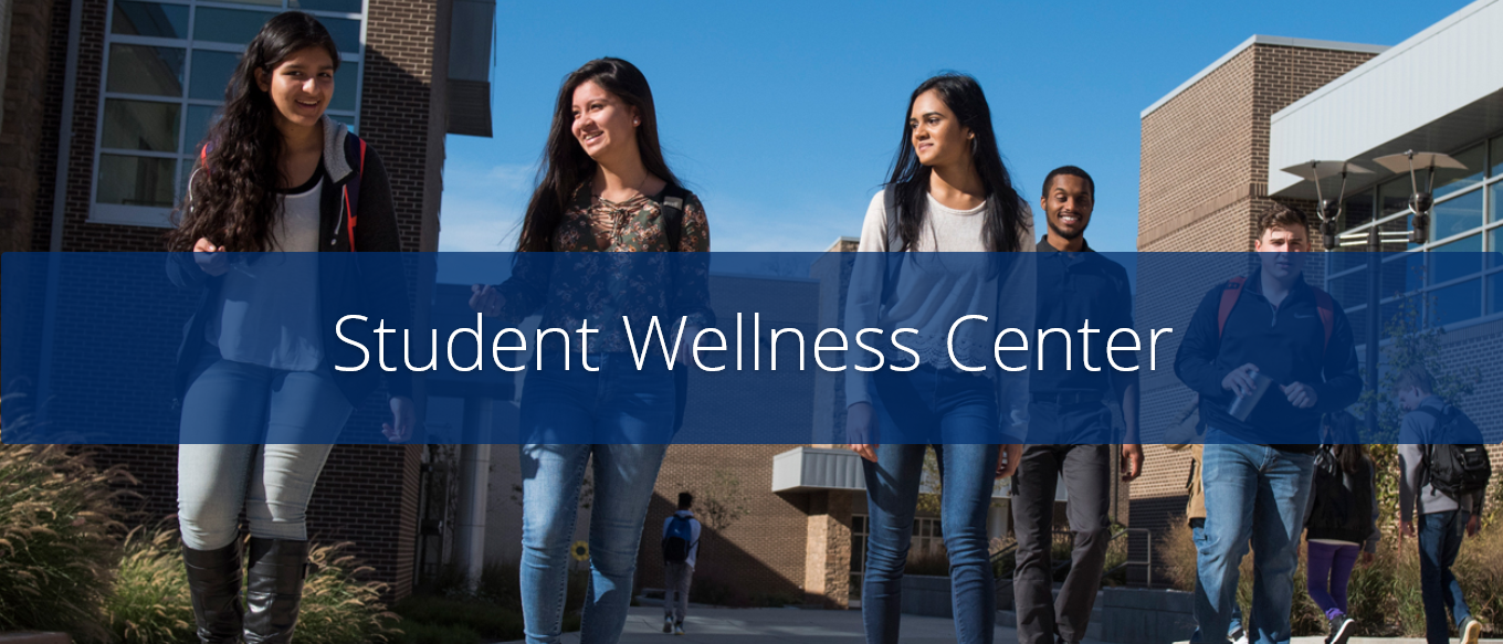 Picture of the Student Wellness page from RCCC