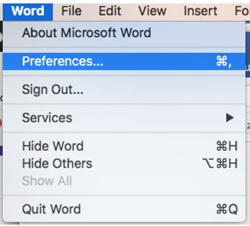 screen snip Word Preferences