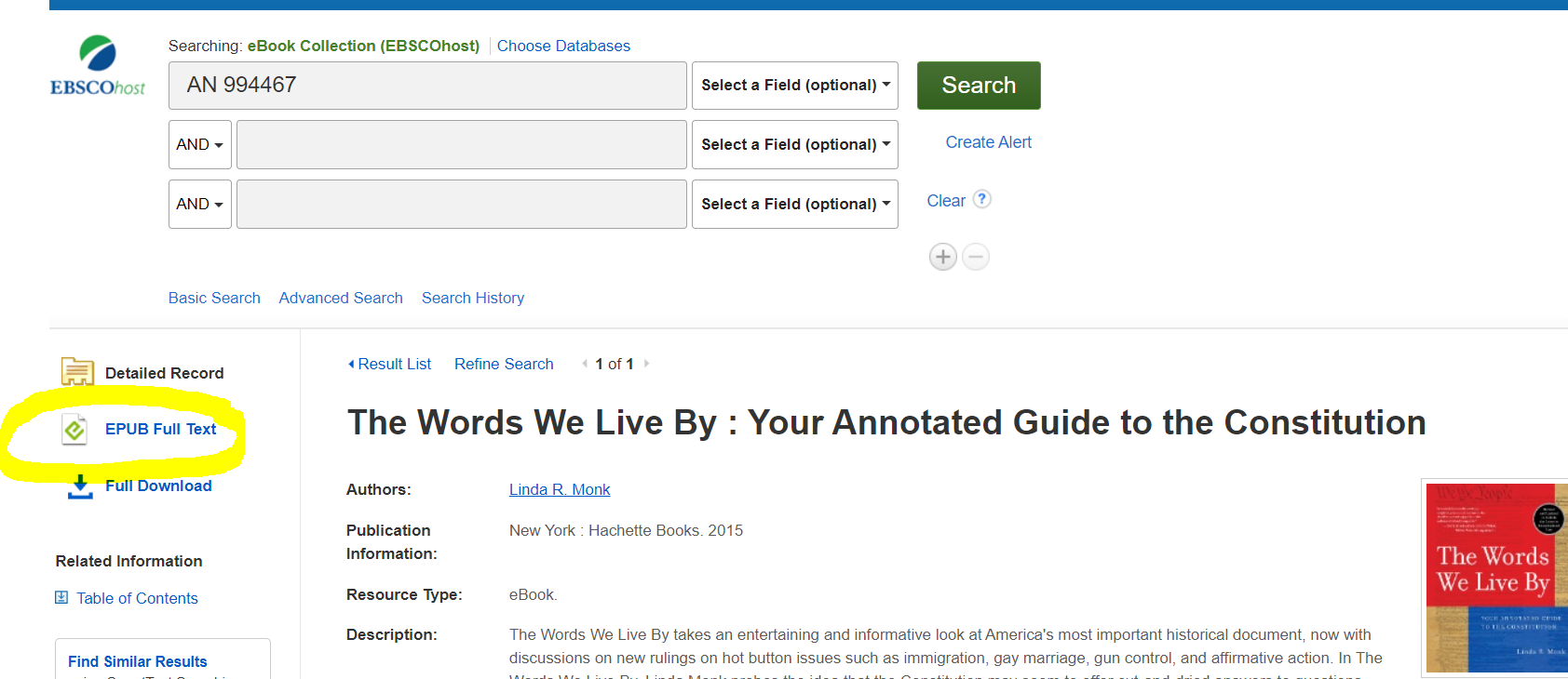 Screenshot of item record of where to click the word ePub