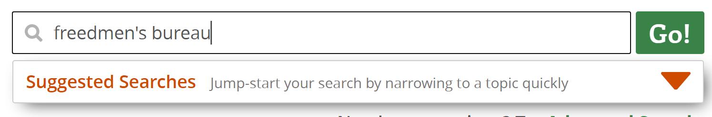 Screenshot of search box - Freedmen's Bureau